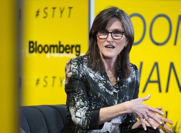 Cathie Wood Bloomberg